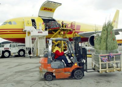 DHL Employee Loading Truck for Trees for Troops